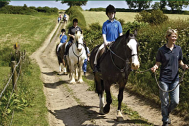 Owston Lodge Equestrian Centre